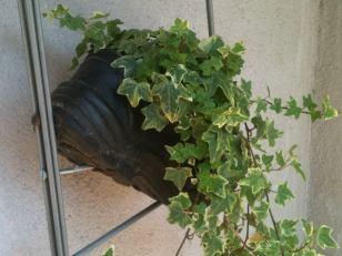 Une vieille chaussure recyclée en pot de fleurs